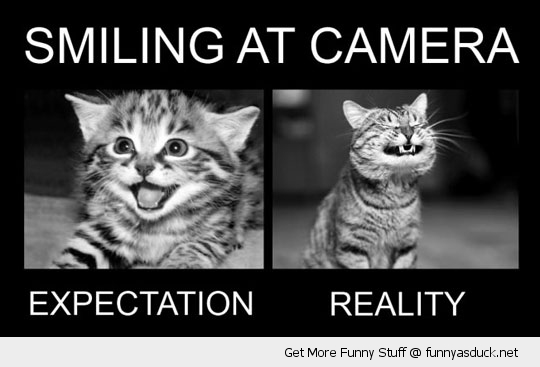 funny-smilimg-camera-cat-pics